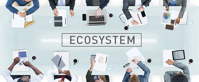 Do you understand your Risk Management Ecosystem?